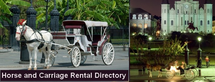 Horse Carriage Rentals in Poconos Pennsylvania LOGO